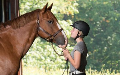 The Best Equestrian Light-Weight Helmets