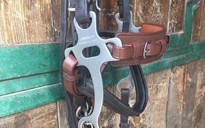 The Best Equine Hackamore Bridle Bits