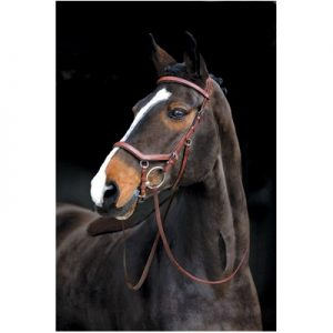 Rambo Micklem Comp Bridle wReins