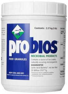 Probios VETS PLUS Feed Granule for Horses