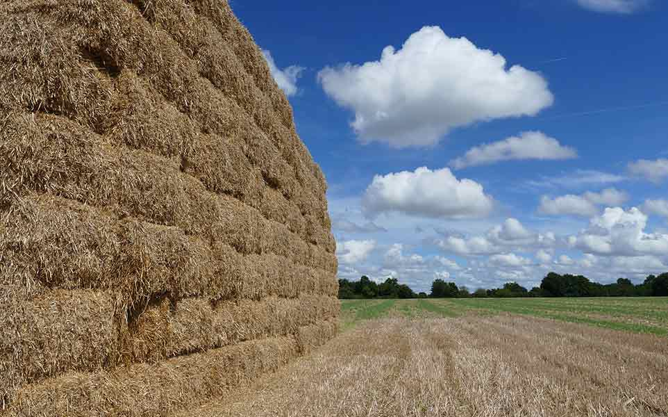 How to Store Hay Without a Barn